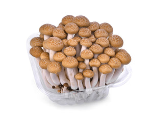 Fresh Brown Shimeji Mushrooms 200g - imported weekly from Thailand