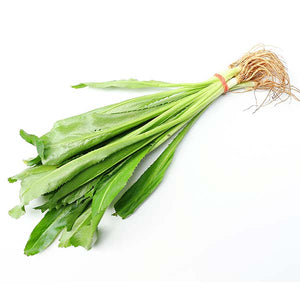 Fresh Thai parsley (stinking) - Thai Food Online (your authentic Thai supermarket)
