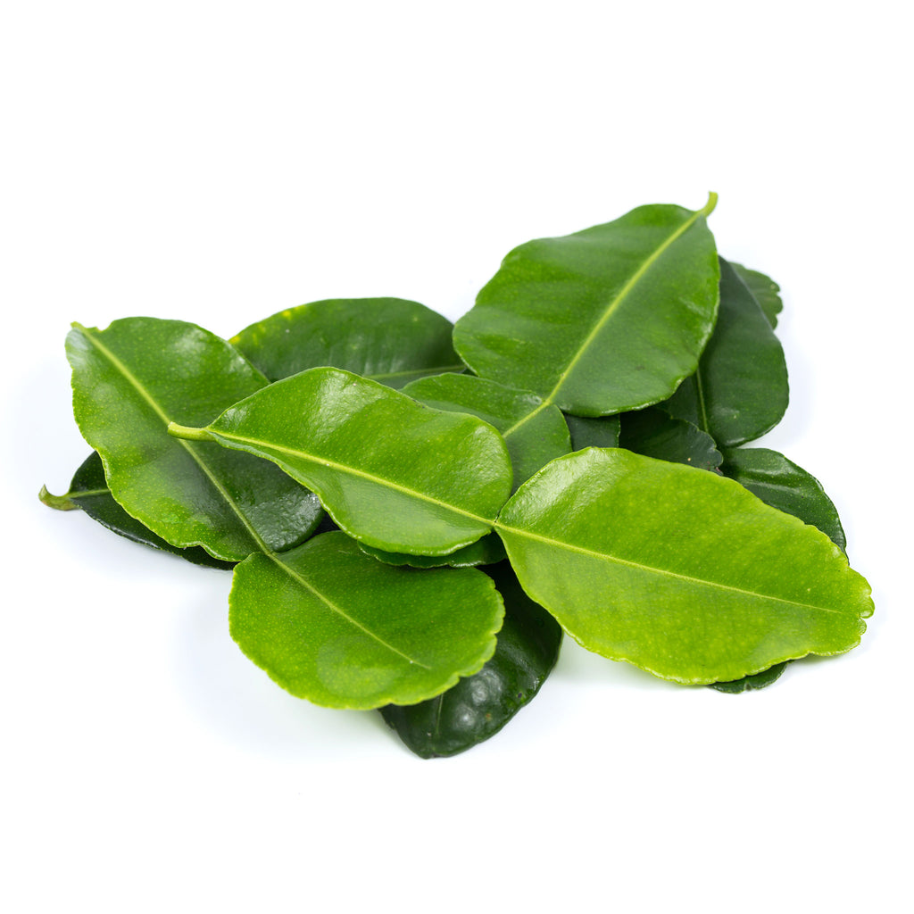 Thai kaffir lime leaves