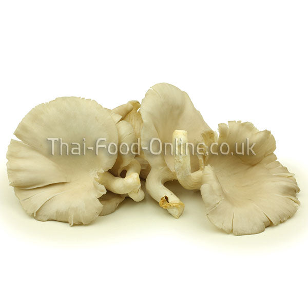 Thai oyster mushroom - Thai Food Online (your authentic Thai supermarket)