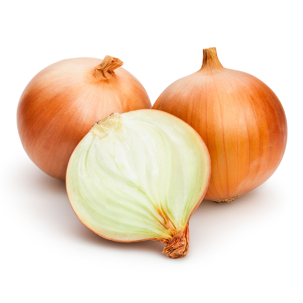 Fresh Spanish Onion - Imported Weekly