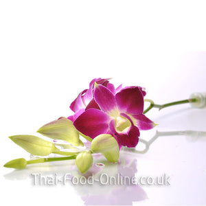 Fresh Thai orchid flowers - Thai Food Online (your authentic Thai supermarket)