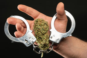Austin, Texas city council decriminalized low level marijuana possession.