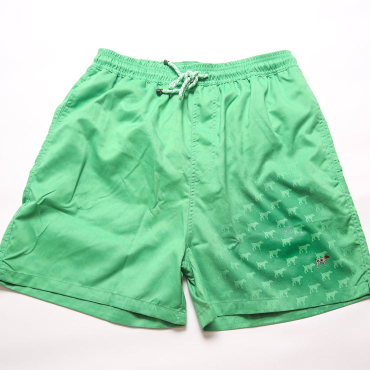 Youth Atlantis Water Activated Trunks