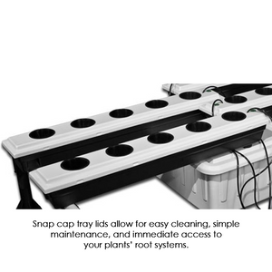 SuperFlow 20 Site Ebb and Flow Hydroponic System - Hydroponics Greenhouse