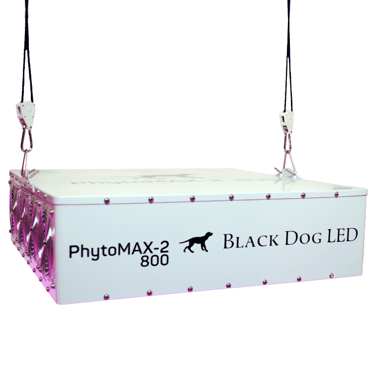 Black Dog LED PhytoMAX-2 800 LED Grow Light - Hydroponics Greenhouse