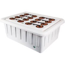 Trinity LED Smart Grow Cabinet - Hydroponics Greenhouse