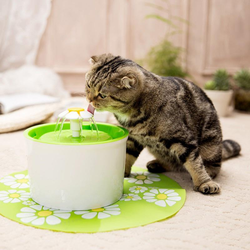 Electric Pet Drinking Fountain