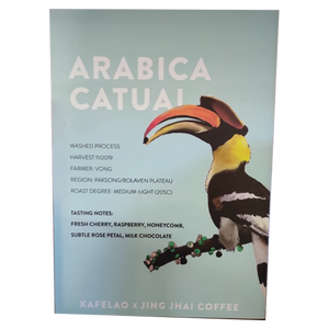 Arabica Catuai Specialty Coffee