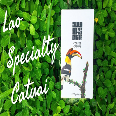 Arabica Catuai Specialty Coffee 250g