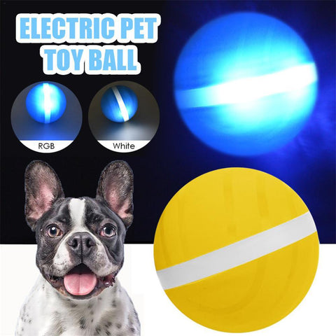 Dog Ball Rolling Flash USB Jumping LED ball