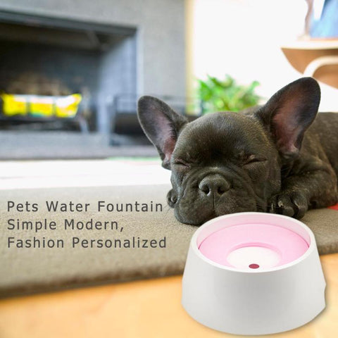 Not Wet Mouth Floating Drinking Bowls