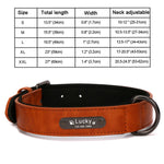 Personalized Large Leather Custom Pet Collar for Dogs with Name ID Tag