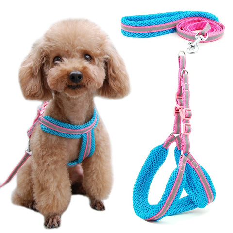 Dog Cat Reflective Breathable Mesh Harness Vest  Dogs Leash Harness Adjustable Puppy Small Dog Night Walking