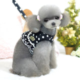 Designer  Puppy Leads/Harness