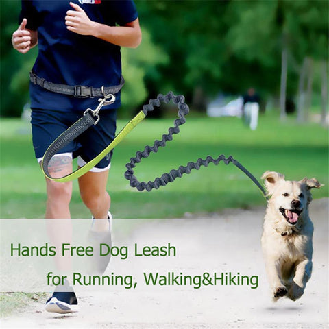Hands Free Elastic Waist Dog Leashes for Running Jogging, Adjustable Nylon Reflective Leash