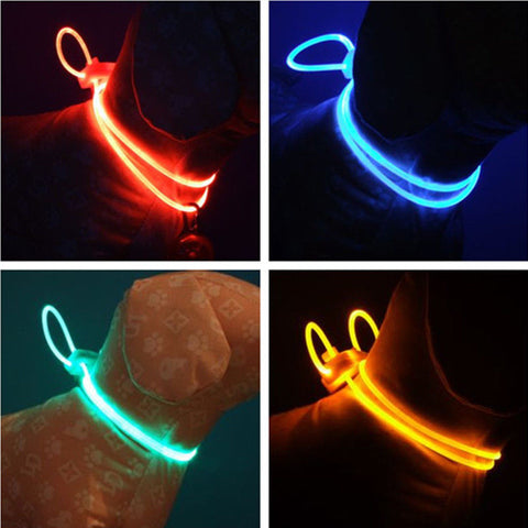Dog Collar Night Safety LED Light-up Flashing Glow In The Dark