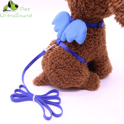 Cute Angel Dog Leashes and Collars Set Designer Wing Adjustable  Dog Harness