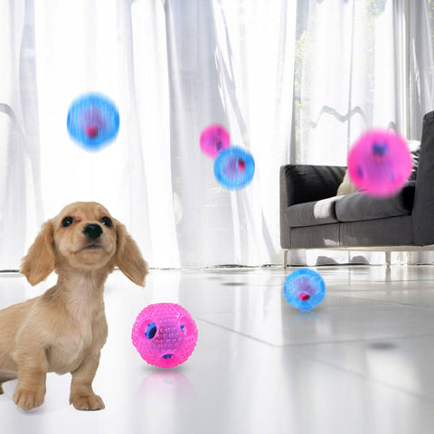 Creative Rubber feed ball Nontoxic toy