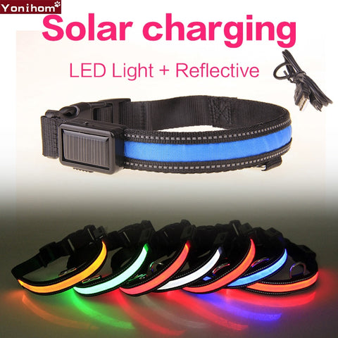Solar USB Rechargeable LED Collar Night Safety