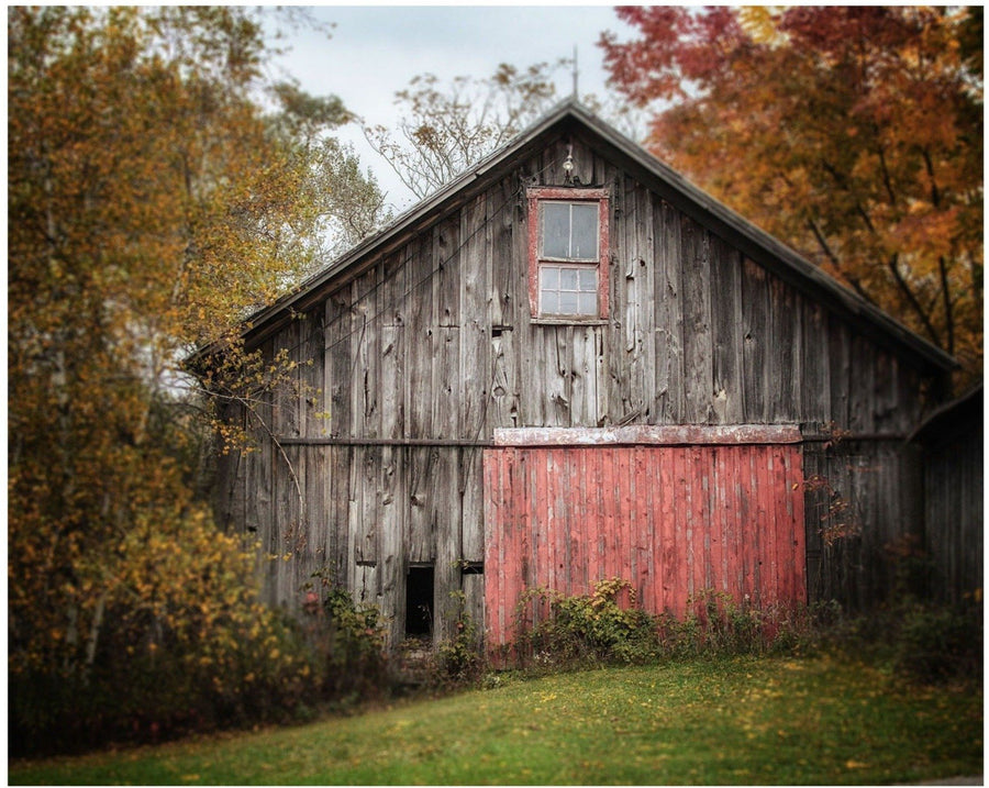Lisa Russo Fine Art Farmhouse and Rustic Decor Barn with the Red Door