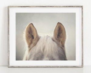 Lisa Russo Fine Art Farmhouse and Rustic Decor Bear's Ears <br>Horse Photography