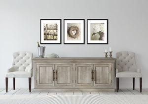 Lisa Russo Fine Art Farmhouse and Rustic Decor Beige Cottage Chic • Set of 3
