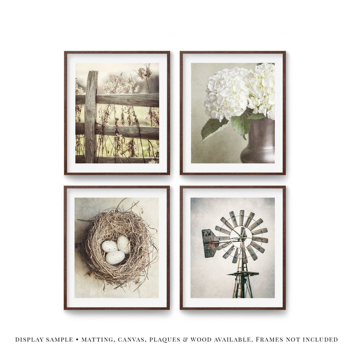 Lisa Russo Fine Art Farmhouse and Rustic Decor Cottage Neutrals • Set of 4
