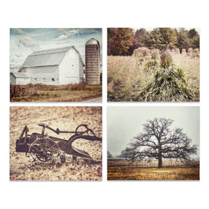 Lisa Russo Fine Art Farmhouse and Rustic Decor Harvest Time • Set of 4