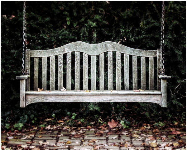 Lisa Russo Fine Art Farmhouse and Rustic Decor Have a Seat