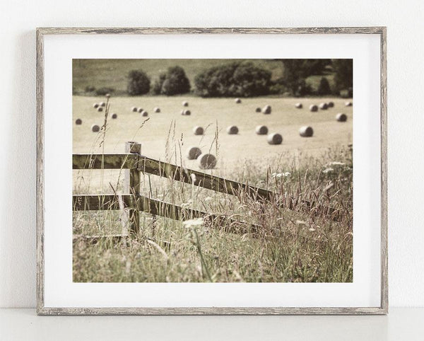 Lisa Russo Fine Art Farmhouse and Rustic Decor Hillside Hay Field <br>Pitlochry Scotland Photography