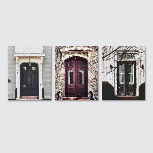 Lisa Russo Fine Art Farmhouse and Rustic Decor Lovely Old Doors • Set of 3