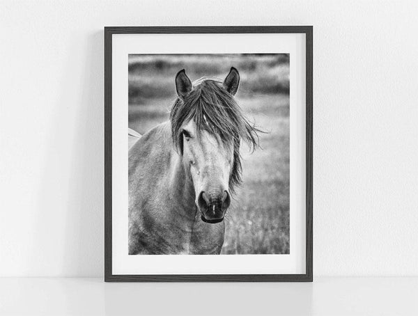 Lisa Russo Fine Art Farmhouse Decor The Mare <br>Black and White Horse Photography