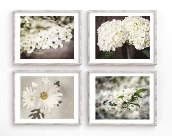 Lisa Russo Fine Art Floral Photography Brown & Ivory Shabby Chic Florals • Set of 4