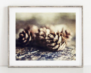 Lisa Russo Fine Art Floral Photography Hemlock Flowers <br>Rustic Lodge Home Decor