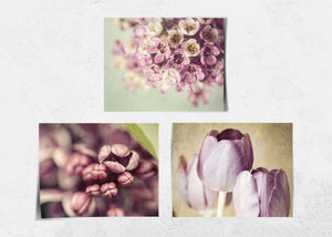 Lisa Russo Fine Art Floral Photography Pink & Purple Florals • Set of 3
