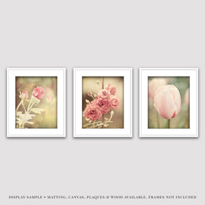 Lisa Russo Fine Art Floral Photography Pink Shabby Chic Flowers • Set of 3