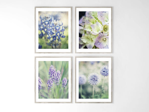 Lisa Russo Fine Art Floral Photography Set of 4 • Nature & Flower Wall Decor • French Country Flowers