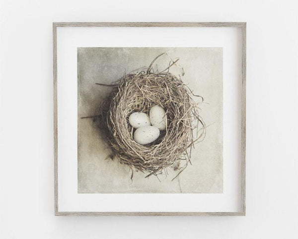 A Perfect Nest <br>Farmhouse Decor