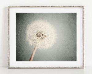 Lisa Russo Fine Art Nature Photography Dreamy Blue Dandelion <br>Shabby Chic Nature Art
