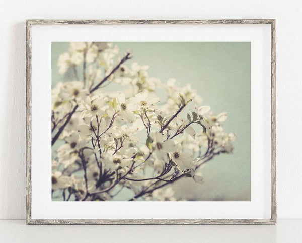 Lisa Russo Fine Art Nature Photography Dreamy Dogwood <br>Feminine Floral Wall Art