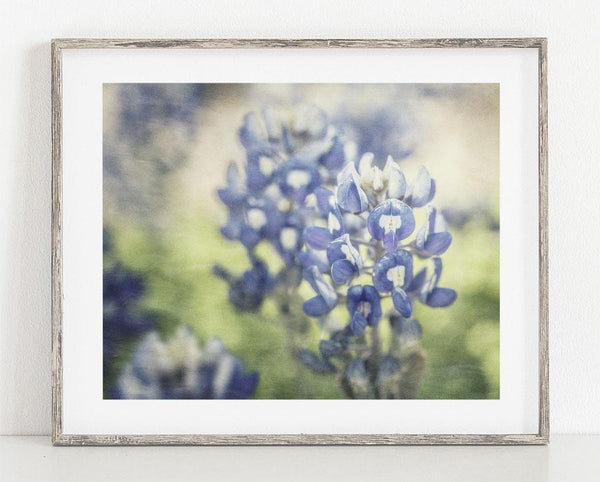 Lisa Russo Fine Art Nature Photography Painterly Bluebonnets <br>Texas Floral Photography