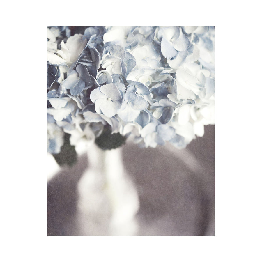 Lisa Russo Fine Art Nature Photography Silvery Blue Hydrangeas