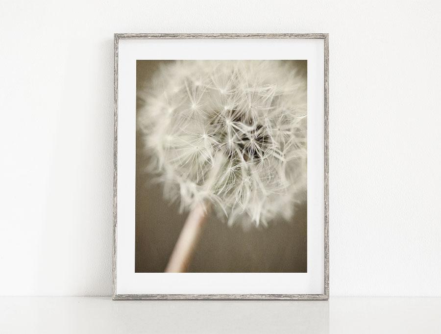 Lisa Russo Fine Art Nature Photography Warm Wishes <br>Dandelion Floral Decor