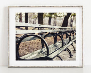 Lisa Russo Fine Art Travel Photography Central Park Bench <br>New York City Photography