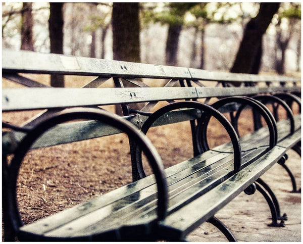 Lisa Russo Fine Art Travel Photography Central Park Bench • New York City