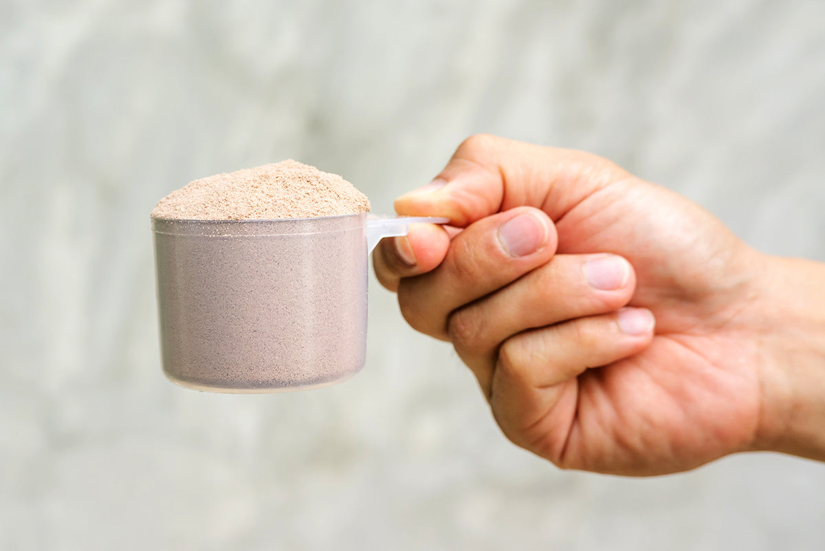 Whey or No Whey? A Look at Protein Powder Supplements