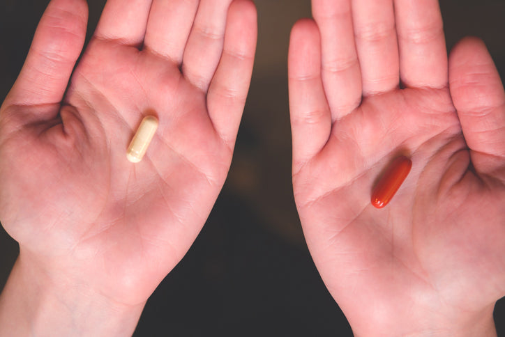 Enzymes and Probiotics: What's the Difference?