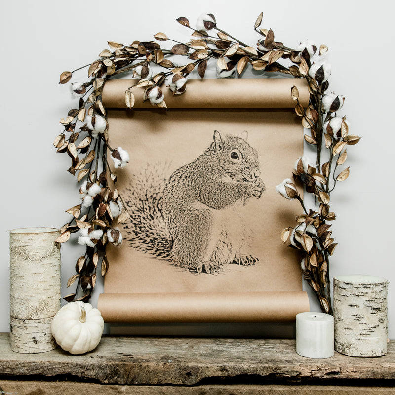 Douglas The Squirrel Scroll