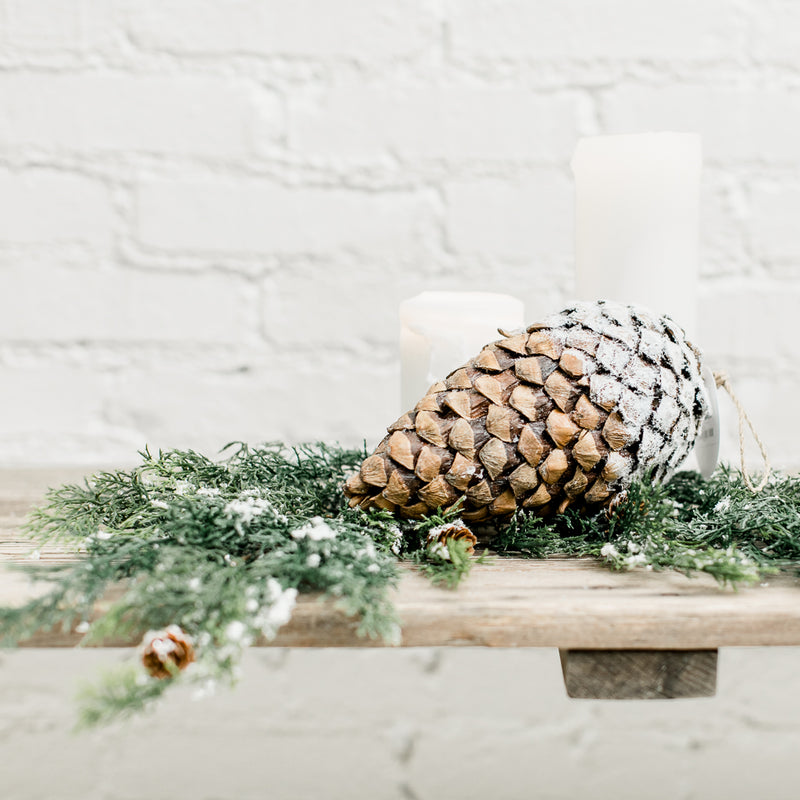 Heirloom Pinecone